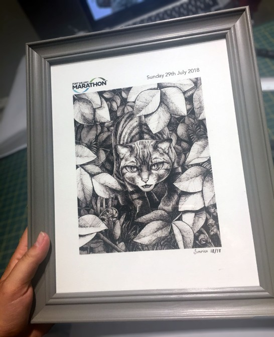 wildcat framed